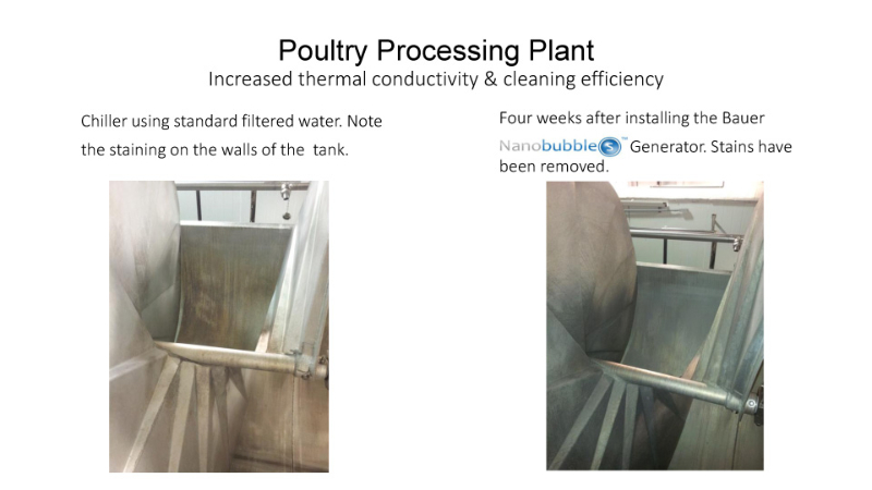 poultry-processing-plant